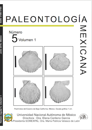 Paleontologia mexicana number5